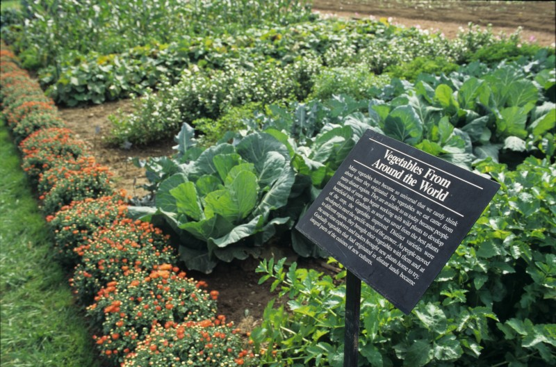 Vegetable Garden at Longwood