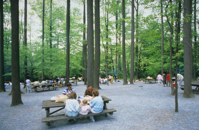 Picnic at Longwood