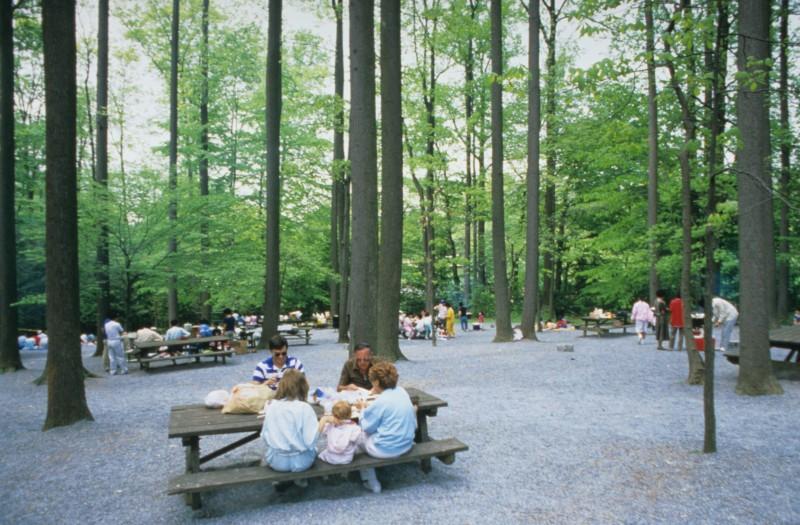 Picnic Area Longwood Gardens
