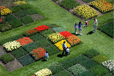 An aerial view of the Garden beginning to bloom.